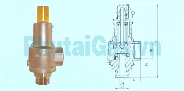 dah 25b cryogenic safety valve for liquid gas tank 1