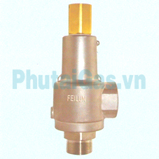 dah 25b cryogenic safety valve for liquid gas tank